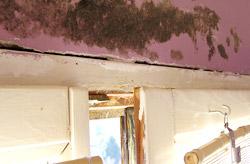 PVC stolarija onemogućava pojavu plijesni na zidu kao kod drvene stolarije